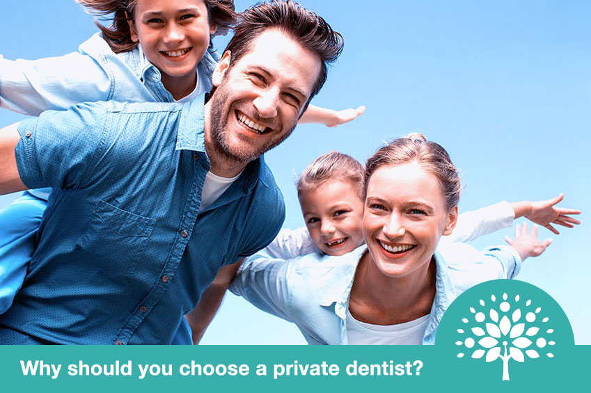 why should you choose a private dentist